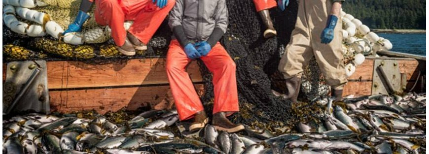 Calzado cómodo y resistente para la pesca profesional