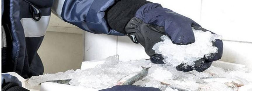 Guantes para frío intenso según normativa EN 511. Frío industrial